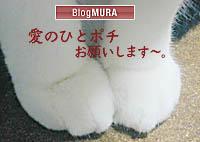 bnpote1.jpg